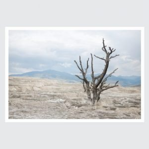 solitude-2