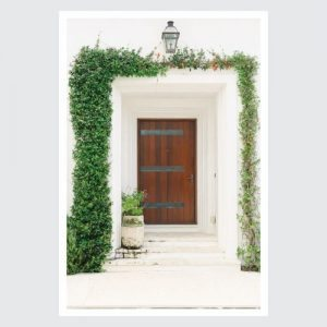 wooden door with greenery