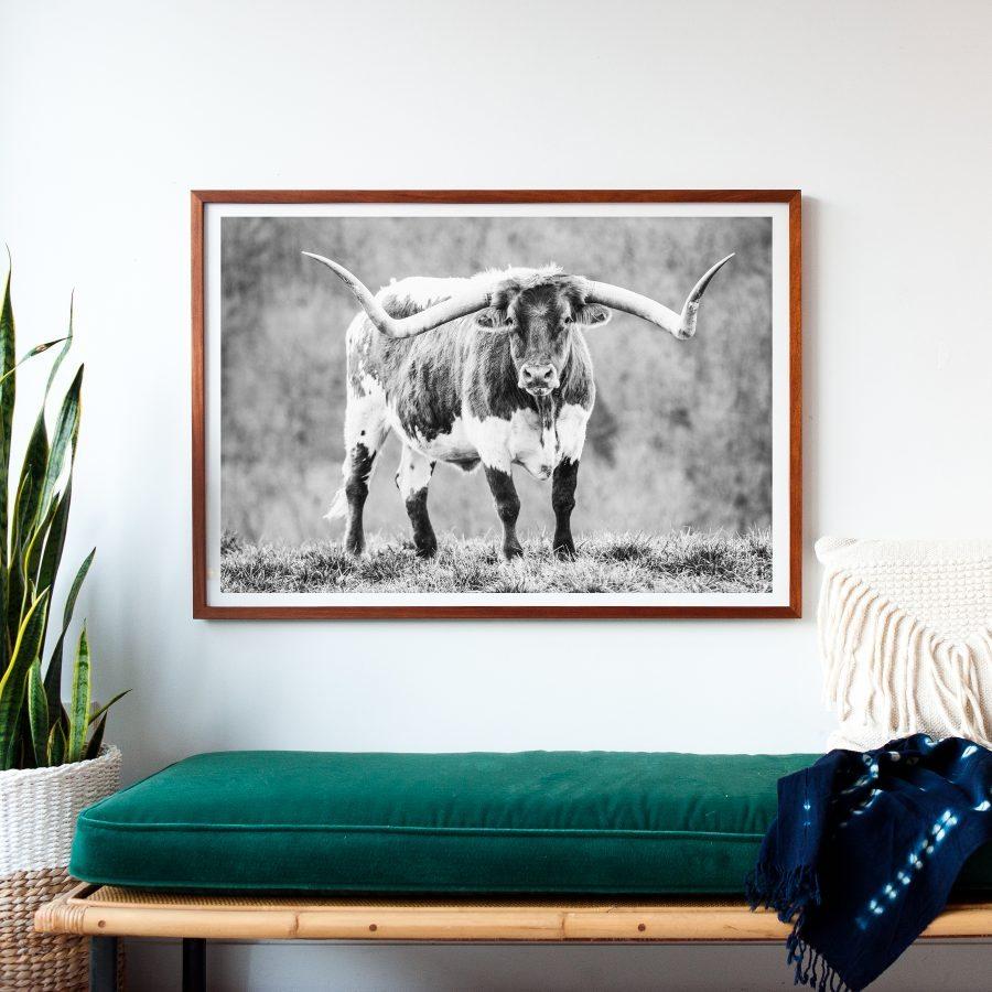 longhorn-print-art