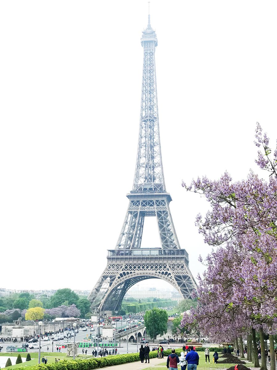 Paris-Travel-Tips-Eiffel-Tower
