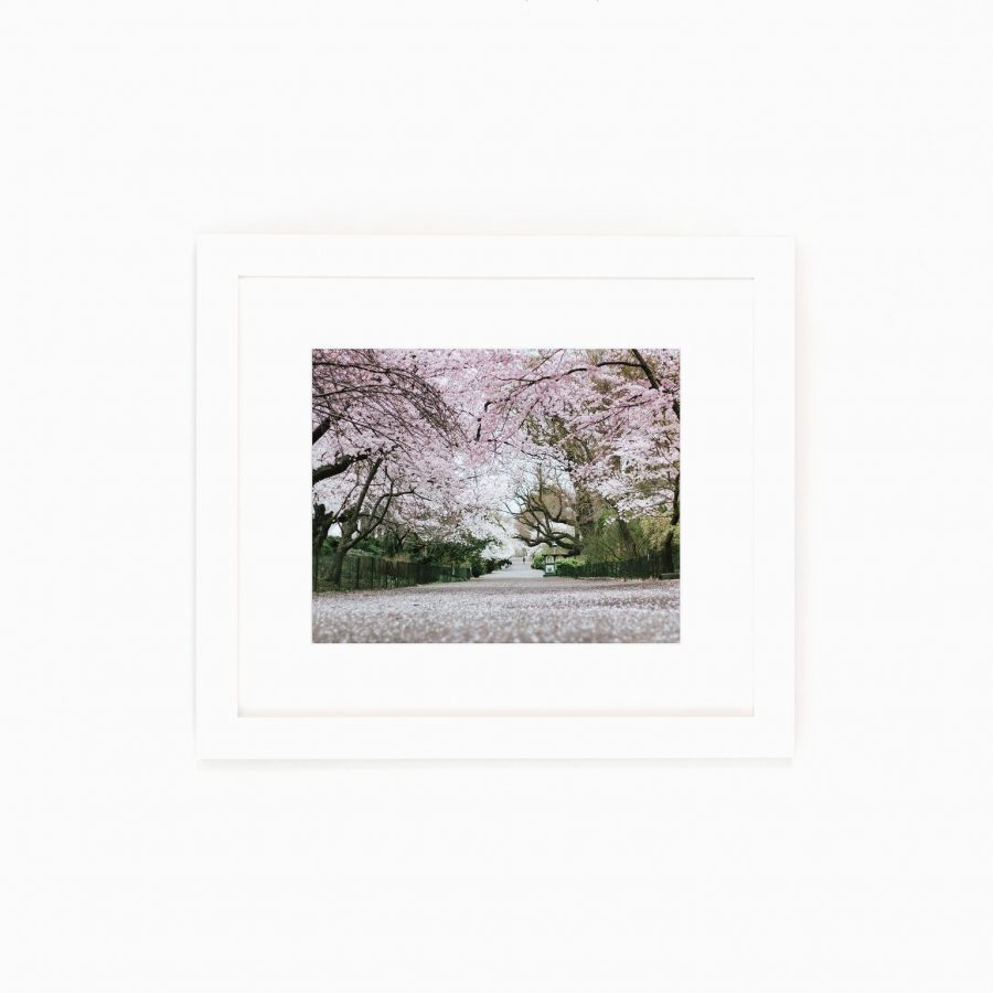 Bridal Path New York City Central Park in Bloom art affordable spring styling must haves