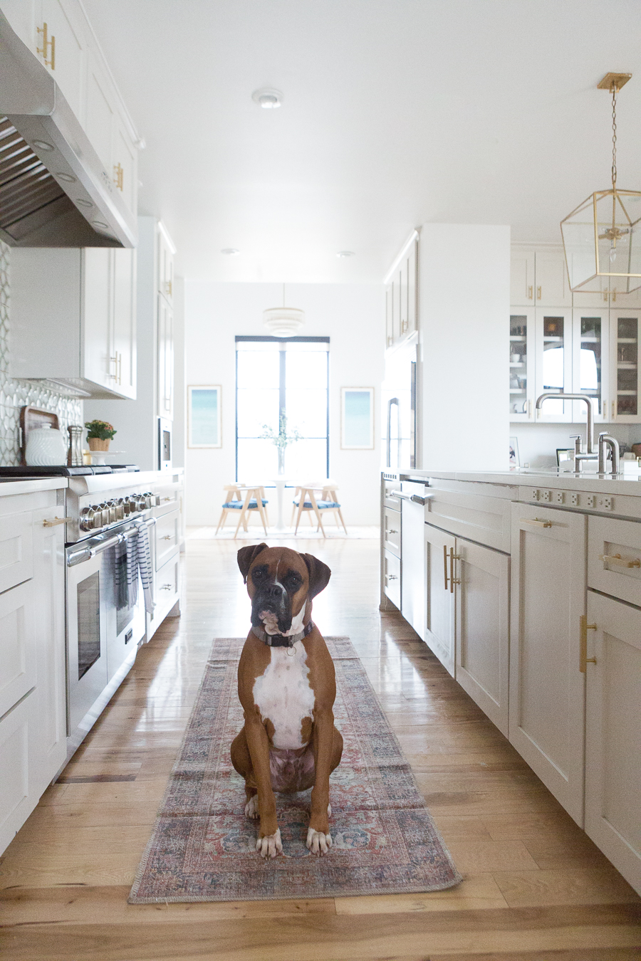 10 Beautiful Kitchen Runners for Your Home kitchen runner with wood floors and white cabinetry with a boxer dog sitting on top of the carpet