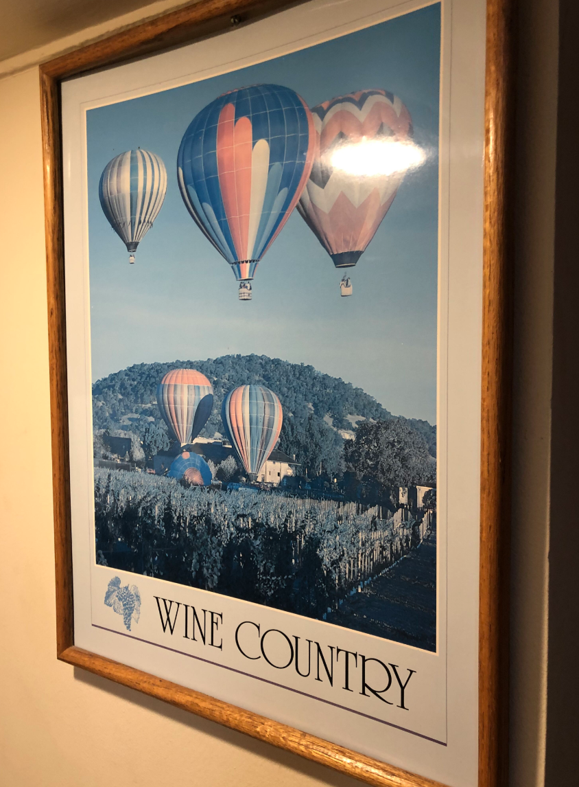 portrait of hot balloon rides in wine country california