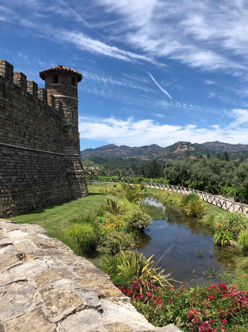 beautiful castle overlooking mountains with a view